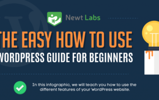 The Easy How To Use WordPress Guide For Beginners (Infographic)