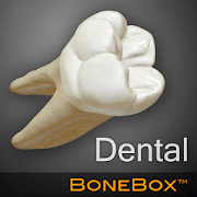 BoneBox - Dental Lite