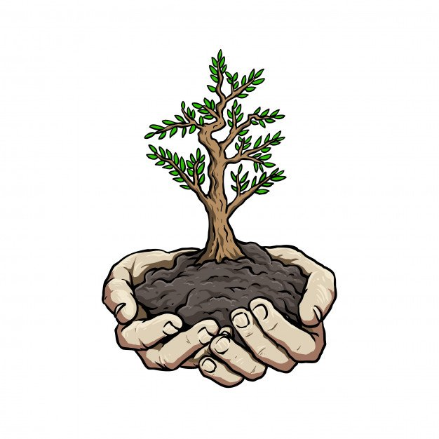 team trees campaign